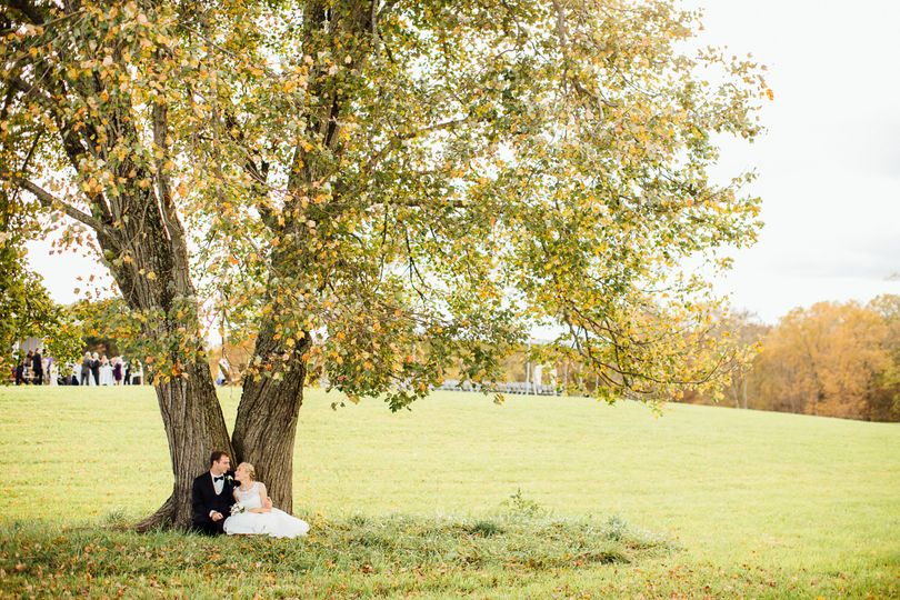 Couples under the tree