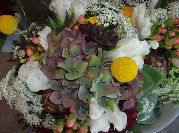 Tmx 1321329323767 HPIM1767 Lyons wedding florist