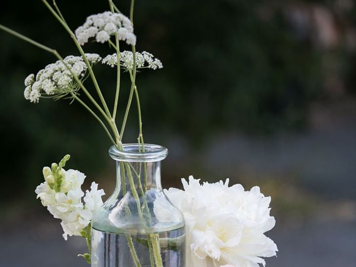 Tmx 1mariahsmithphotography362 51 1895453 157429144346053 Petaluma, CA wedding florist