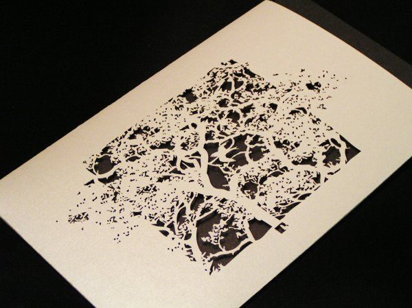 This is our Treetops large invitation sleeve in White Gold. More info and choices at...