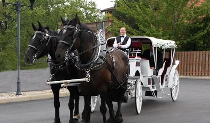Spring Mist Farms- Carriage Service