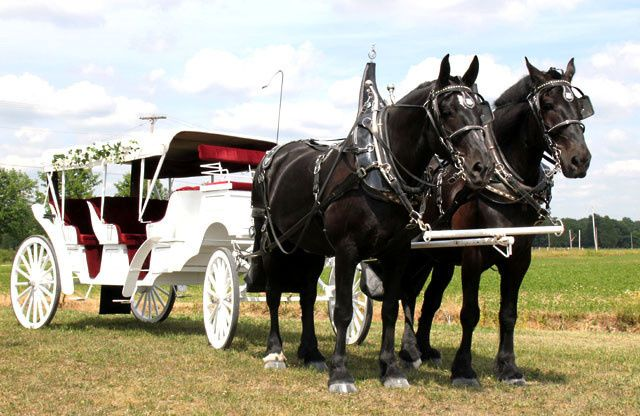 Tmx 1474320727292 Duke  Molly Brunswick wedding transportation