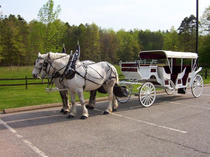 Tmx 1474320804461 Sassy  Bo Brunswick wedding transportation