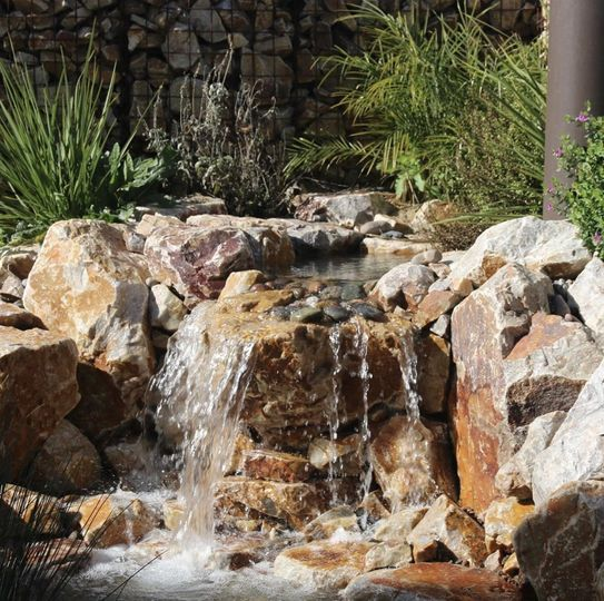 One of our water features!