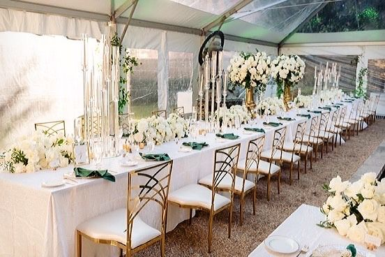 Tmx 1b09f6f0 38bd 45e4 B0ae E5f6f77b24d3 51 965553 161947871285969 Laurel, MD wedding florist