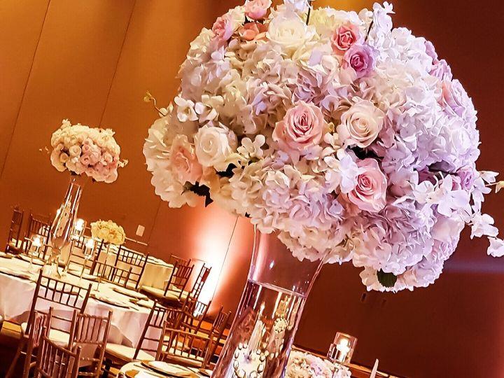 Tmx Img 0965 51 965553 Laurel, MD wedding florist