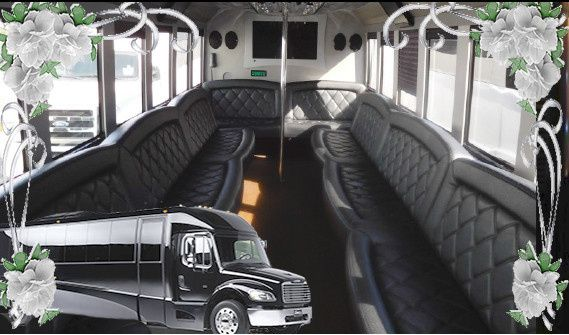 Tmx 1513151634458 5 Star Party Bus Rental Tiffany 30 Passenger Plainfield wedding transportation