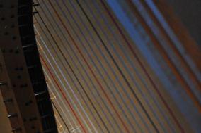 Houston Harpist Echo Shen