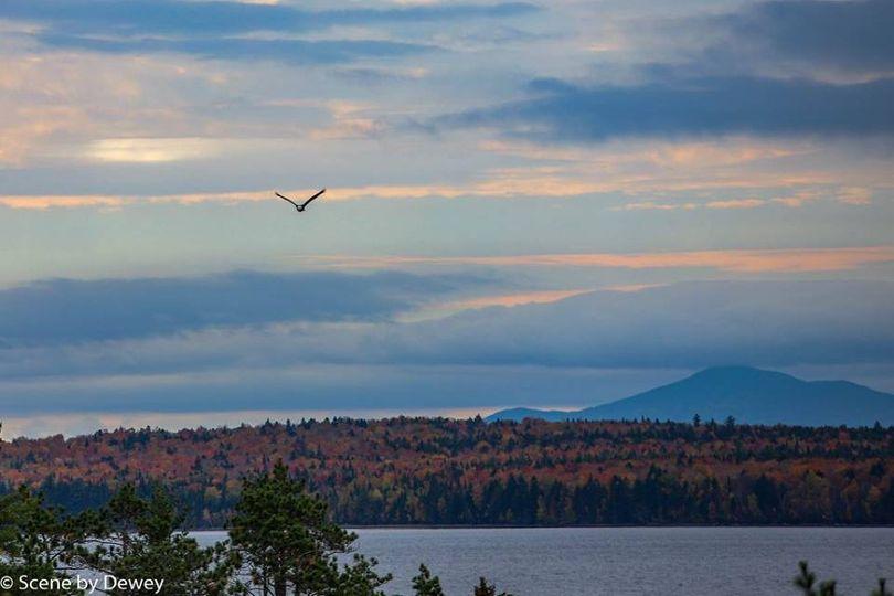 Eagle flying over Eagle Point