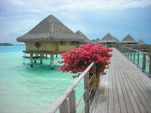 If I were to describe Bora Bora in one picture, this would be it.
