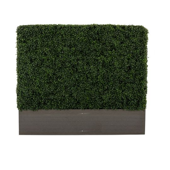 Small Hedgewall - 4ft