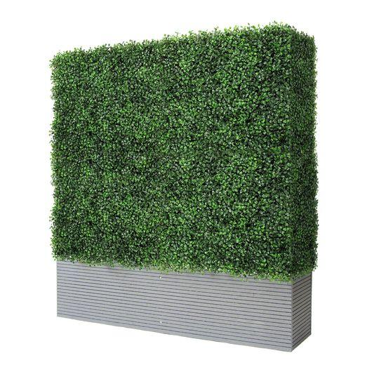 Hedgewall