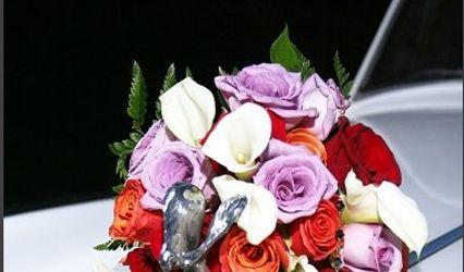 Bolsinger's Flowers 1