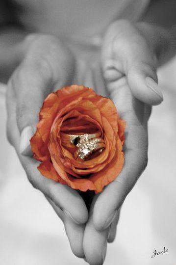 Rings1 3