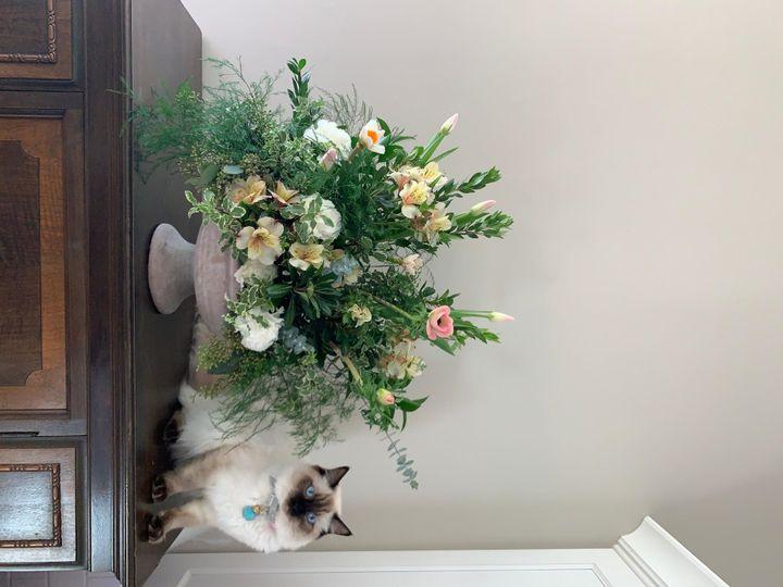 Tmx 20200118 214409134 Ios 51 1016953 159077730467369 Encinitas, CA wedding florist