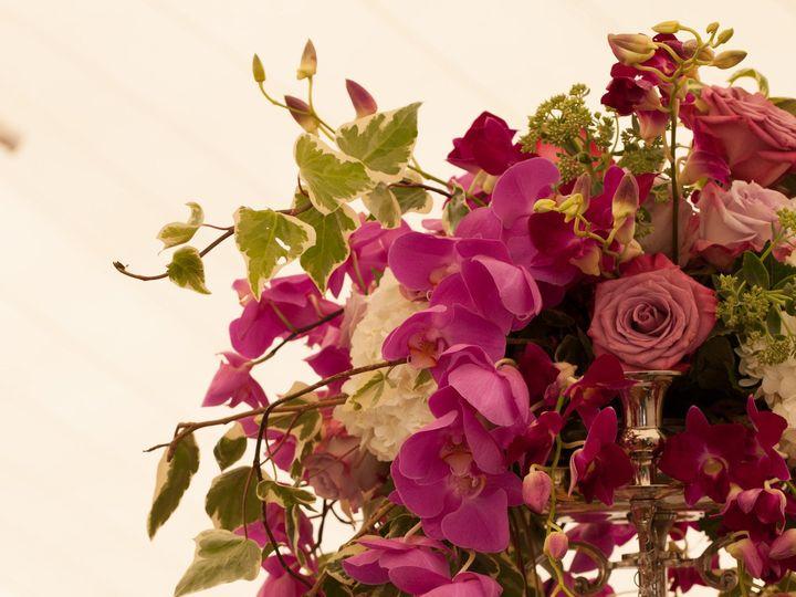Tmx 1405474562980 0003img8024 Portland, Maine wedding florist