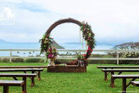 Plant Hawaii