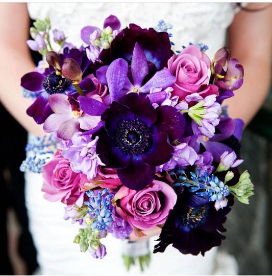 Hues of violet