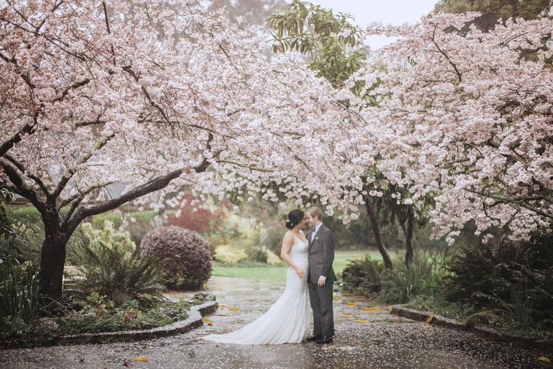 Cherry blossoms + this beautiful couple