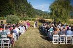 Twin Sisters Farm & Vineyards image