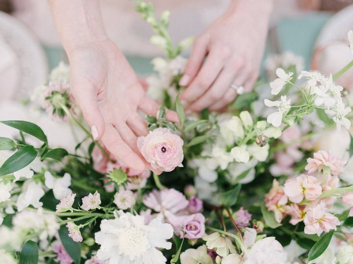 Tmx 1487606133336 Blush 305 Columbia, Maryland wedding planner