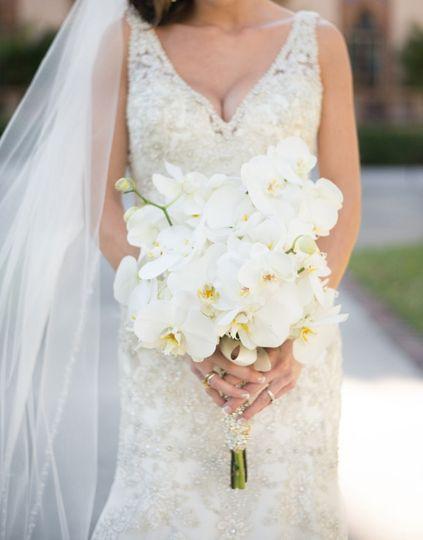 Bouquet - phalaenopsis