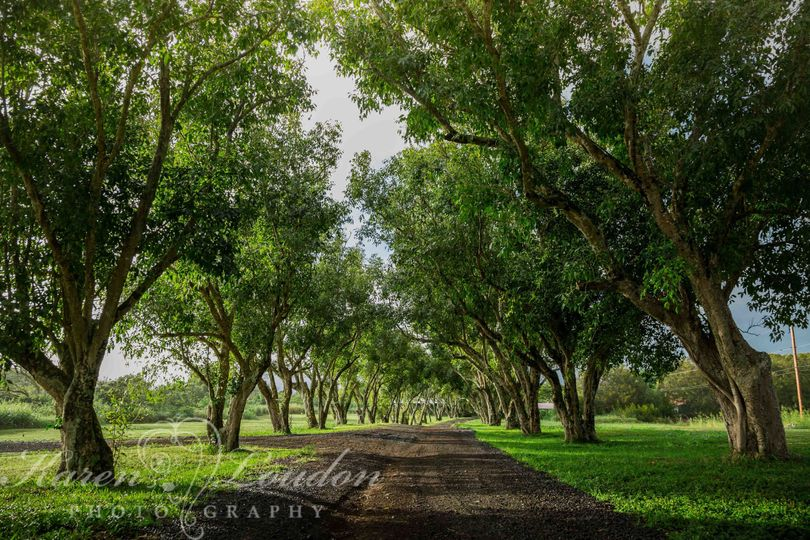 Puakea Ranch wedding © Karen Loudon Photography
