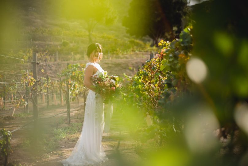 Weddings by Amy Millard