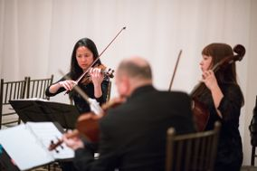 Tribute String Quartet