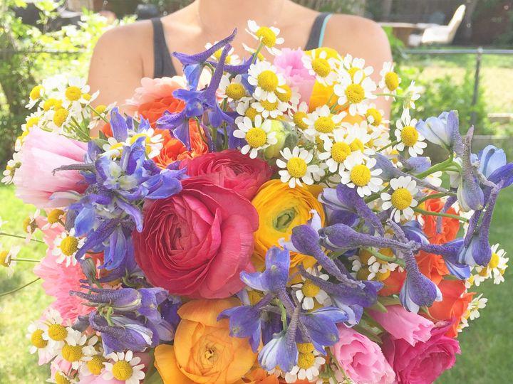 Tmx 1468254222119 Image Denver wedding florist