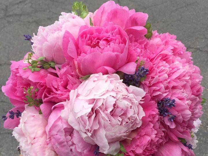 Tmx 1468254429401 Image Denver wedding florist