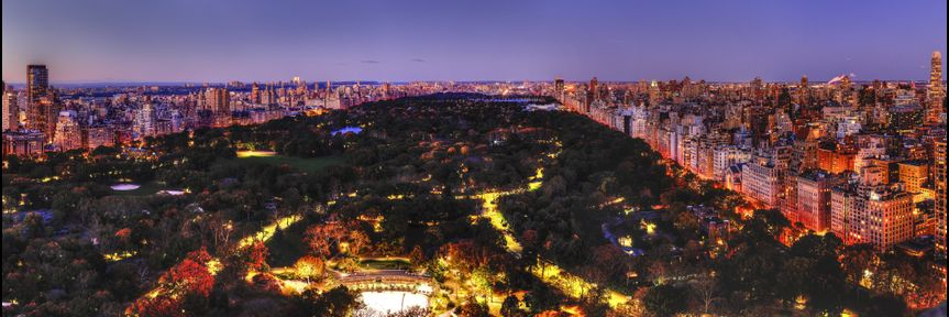 Rooftop - Central Park View