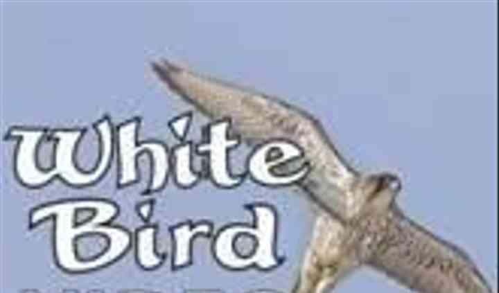 White Bird Video