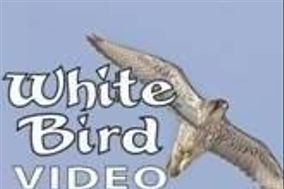 White Bird Video