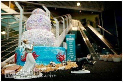 Tmx 1467854458929 3008982871080146404972130413787n Largo, Florida wedding cake