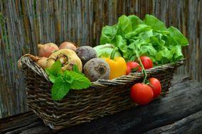 Lagom Food Services