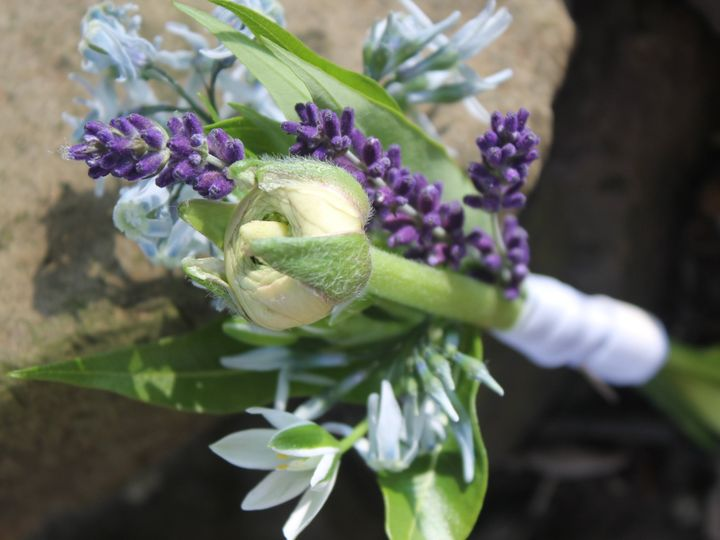 Tmx Img 8895 51 1015563 Doylestown, Pennsylvania wedding florist