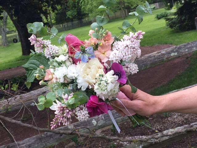 Tmx Prettyposy 1 51 1015563 Doylestown, Pennsylvania wedding florist