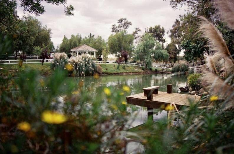 Venue pond