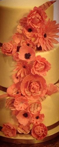 Tmx 1389518933670 Pink And Poetry Close U Anchorage wedding