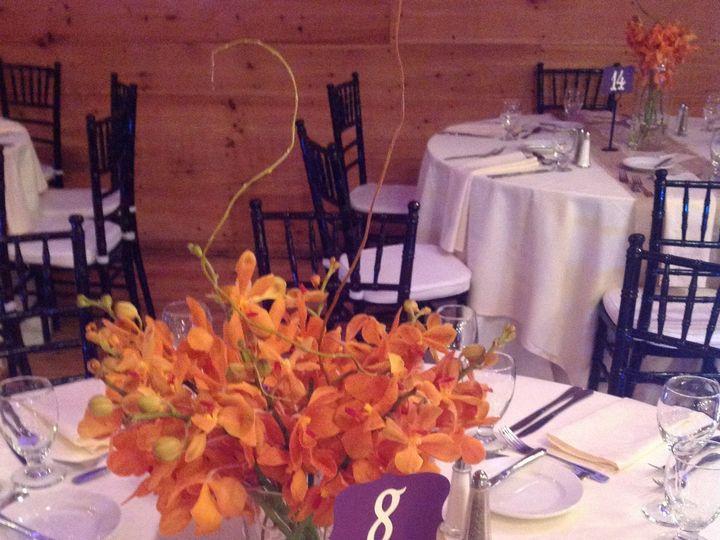 Tmx 1416252254203 Img2642 Plymouth, Massachusetts wedding florist