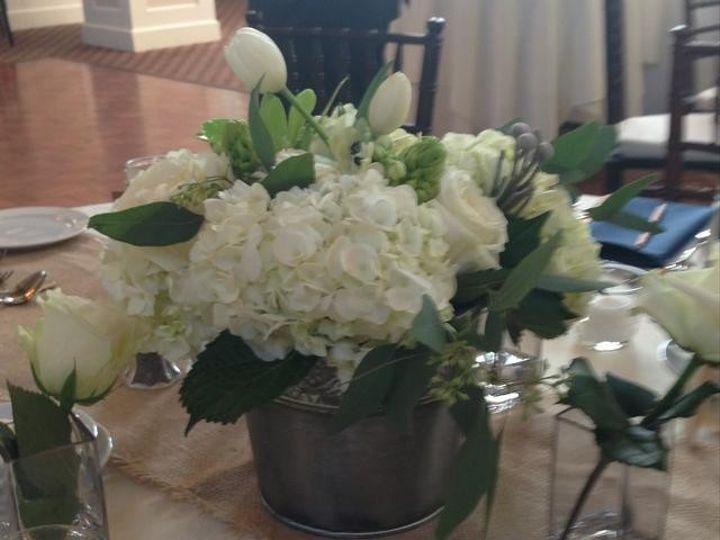 Tmx 1458024481771 Bucket Whydrangea Pinehills Plymouth, Massachusetts wedding florist