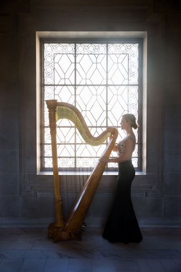 Window to my harp