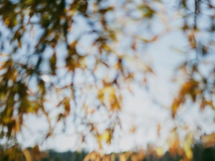 Tmx 1449288164430 Fallninlove 57 Franklinville wedding photography