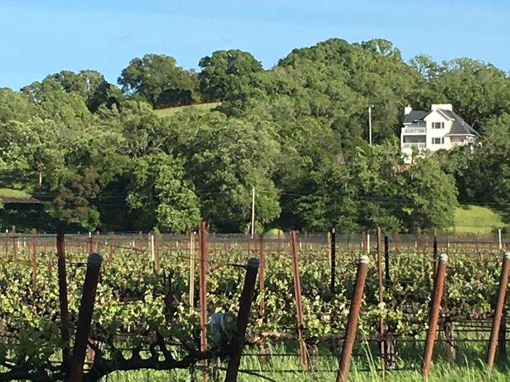 Views from Fetzer Vineyards below looking up toward Bramasole vacation home