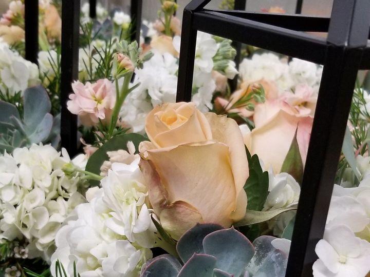 Tmx Img 20190920 201937 584 51 1044763 1570335443 Temecula, CA wedding florist