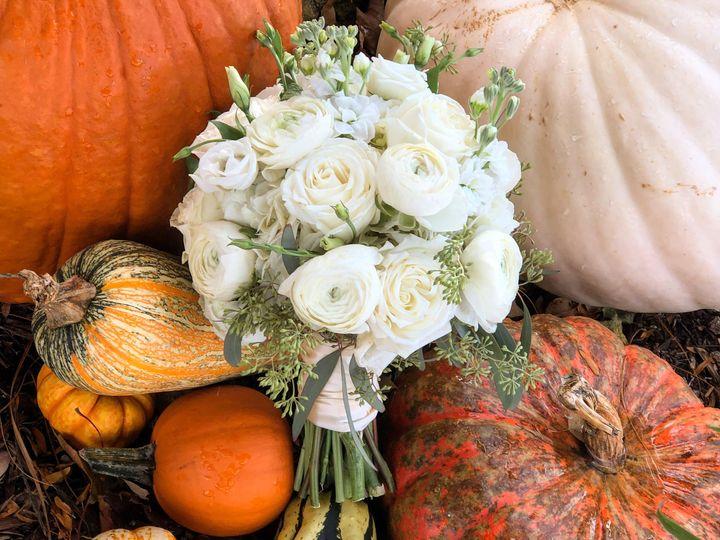 Tmx Img 2471 51 315763 Menomonee Falls, WI wedding florist