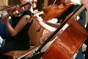 Canterbury Strings