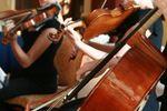 Canterbury Strings image