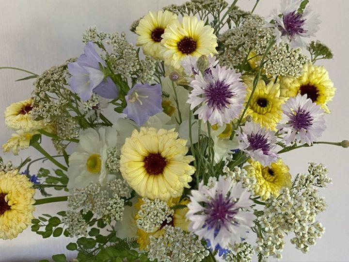 Tmx Img 6430 51 1988763 160095497939685 Oneco, CT wedding florist